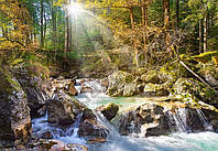 Пазлы Castorland 200382 Речка в лесу