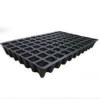 Кассеты для рассады 77 ячейки,  60см*40см, толщина кассеты 0,75-0,80мм, Украина
