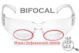 Бифокальные защитные очки Pyramex INTRUDER Bif (+2.0) (clear) прозрачные, фото 3