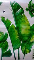 """Вінілові наклейки на стіну, вікна, двері """"зелене листя, папороть"""" 115см*98см (лист 60*90см), фото 3"""