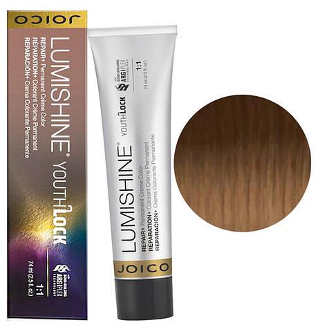 Фарба для сивого волосся Joico LumiShine YouthLock 74 мл 9NNG/9.003 Світлий блондин натурально-золотистий, фото 2