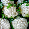 КУЛ F1 - семена цветной капусты, 2 500 семян, Syngenta
