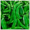 КЛАРОН - семена фасоли спаржевой, 100 000 семян, Syngenta