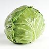 СВИРЕЛЬ F1 - семена капусты белокочанной, 2 500 семян, Bayer