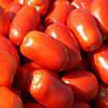 КЛАССИК F1 - семена томата детерминантного, 1 000 семян, Bayer