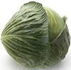 ЛАГРИМА F1 - семена капусты белокочанной калиброванные, 1 000 семян, Rijk Zwaan