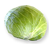 СЕПТИМА F1 - семена капусты белокочанной, 1 000 семян, Rijk Zwaan