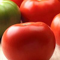 САНШАЙН F1 - семена томата детерминантного, 1 000 семян, Semenis