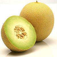ДЖУКАР F1 - семена дыни тип Галия, 1 000 семян, Rijk Zwaan