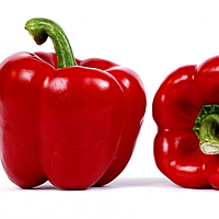 МАЗУРКА F1 - семена перца сладкого, 1 000 семян, Rijk Zwaan, фото 1
