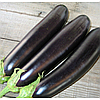 САМУРАЙ F1 - семена баклажана, 1 000 семян, Kitano Seeds