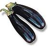 НАРВАВ F1 - насіння баклажана, 1 000 насінин, Lark Seed
