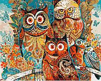 Картина по номерам Волшебные совы 40*50см Brushme Раскраски Сова Абстракция
