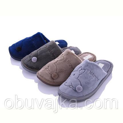Зимняя обувь оптом Комнатные зимние тапочки 2021 бренда Lion (рр. 36-41), фото 2