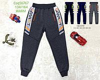 Спортивные брюки для мальчиков с начесом Seagull 134-164 p.p.