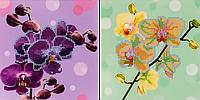 """Схема для вышивания бисером на подрамнике (цветы) """"Орхидея"""""""