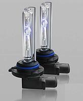 Ксеноновые лампы Infolight 35W (3000/8000K)