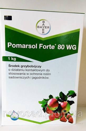 Pomarsol Forte 80 wg (Помарсол Форте) 1кг -  контактный фунгицид от парши и серой гнили - ФОП Новосад С.М.  - Импортные саженцы: малины, клубники, ежевики  (Польша, Голландия, Италия) в Волынской области