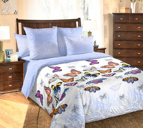 Постельное белье Галатея перкаль  ТМ Комфорт-Текстиль (Семейный), фото 2