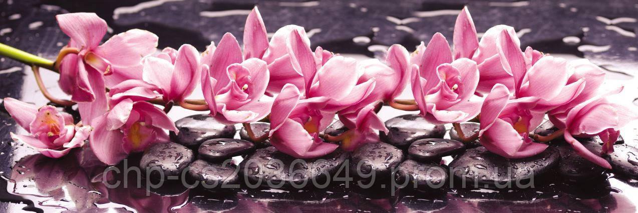 Стеклянный фартук для кухни - скинали Орхидея на камне Цветы