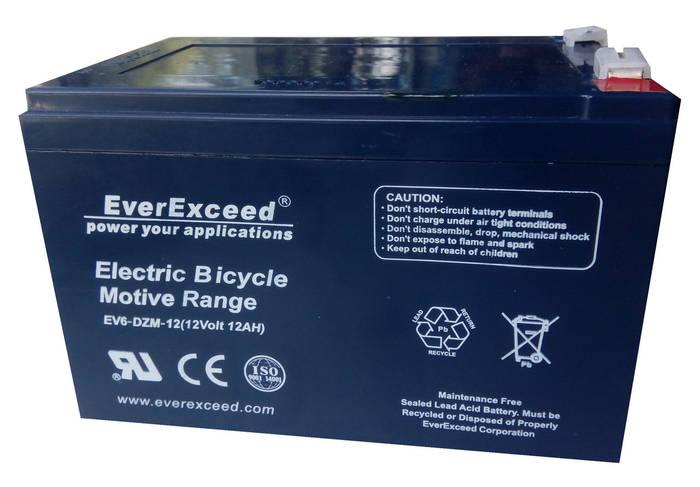 Аккумулятор EverExceed DZM 12-12 (EV6-DZM-12)