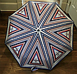Автоматичний жіночий парасолю Airlines, фото 2