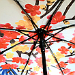 Зонт автоматический женский, фото 5