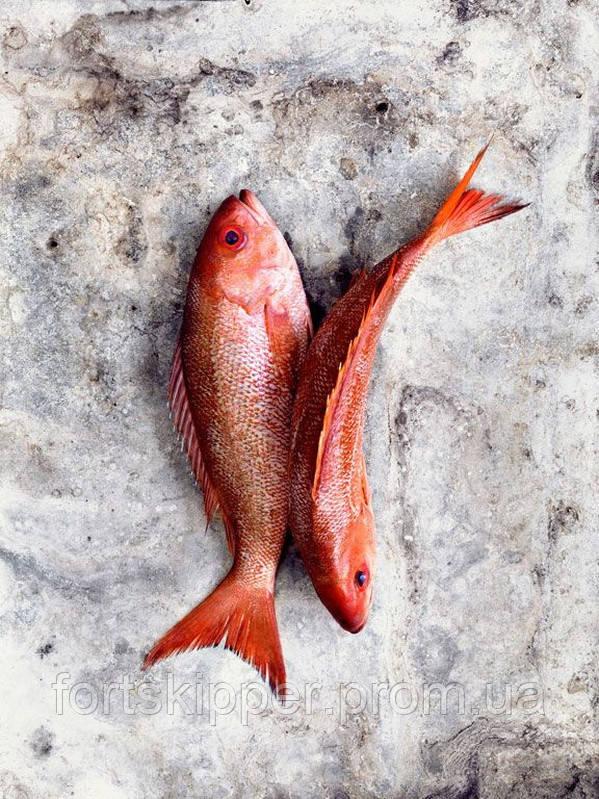 Обладнання для переробки червоної риби Pisces