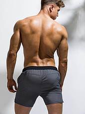 Чоловічі шорти для плавання Deenyt - №SP4941, фото 2
