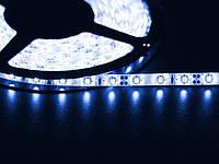 Светодиодная лента 3528  60 LED синяя 4.0-4.5 Lm/LED влагозащищена IP65