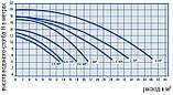 Насос для басейну AstralPool / Fluidra Victoria Plus Silent 1,5 кВт (26 м3/годину), фото 6