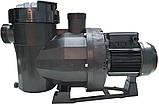 Насос для басейну AstralPool / Fluidra Victoria Plus Silent 1,5 кВт (26 м3/годину), фото 2