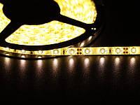 Светодиодная лента 3528  60 LED белая(теплый) 4.0-4.5 Lm/LED влагозащищена IP65