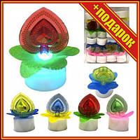 """Светяшка """"Цветок с сердцем"""" (16 штук),Светящиеся игрушки для детей,Игрушки антистресс для детей,Силиконовые"""