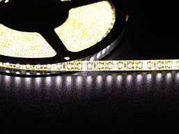 Светодиодная лента 3528 120 LED белая 4.0-4.5 Lm/LED влагозащищена IP65