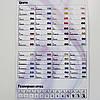 Карта цветов и размеров страз DMC Premium
