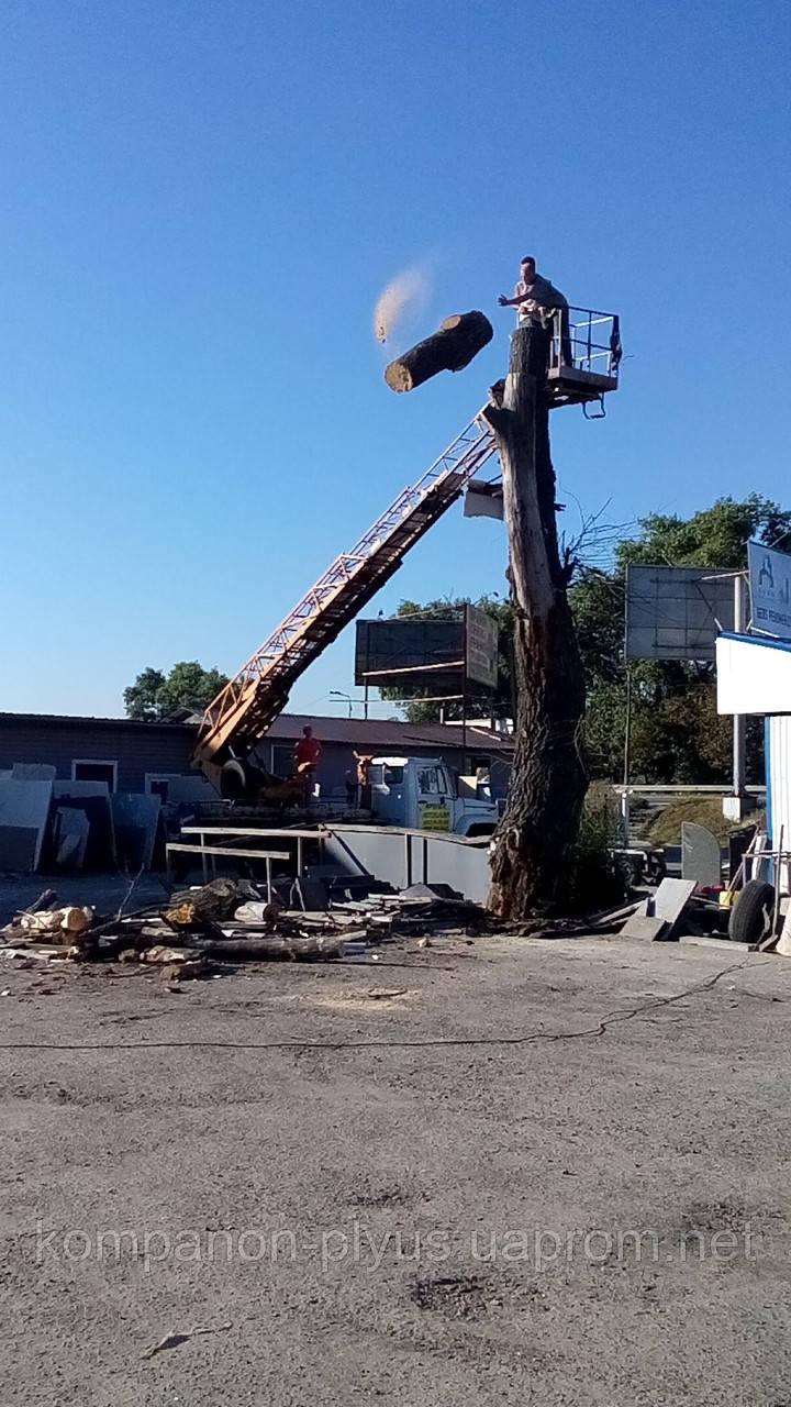 Удаление деревьев Киев Кронирование деревьев Корчевание пней