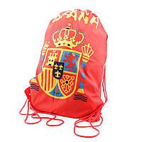 Футбольная сумка UFT Bag Spaine