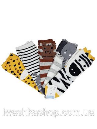 Разноцветные носки с животными на мальчиков 2 - 3 лет, р. 23 - 26, Primark