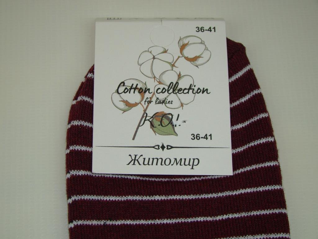 Шкарпетки жіночі Житомир OAM238 (36-41р) код 13139