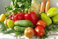 Насіння овочів велика (професійна) упаковка