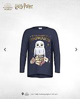Детская кофта Future Student of Hogwarts Harry Potter Size 110 sm 4-5 years