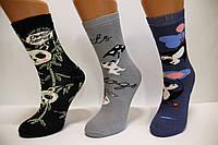 Дитячі шкарпетки махрові для підлітків Стиль люкс 20-22 517,518,519