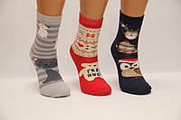 Дитячі шкарпетки махрові для підлітків Стиль люкс 22-24 505,506,507