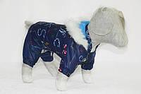Комбинезон костюм для собаки Забава синий
