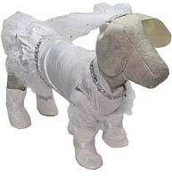 Платье для собак свадебное