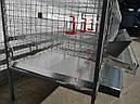 Клетка для перепелов., фото 2