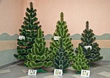 """Штучна новорічна зелена сосна зрозпушена з інеєм """"СНІГ"""" ПВХ, висота 2,2 м, фото 3"""