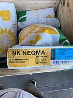 Сингента НК Неома семена подсолнечника под Евролайтинг Syngenta насіння соняшнику Clearfield
