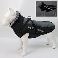 Жилетка для собак «Актив», черно-серый, одежда для собак мелких, средних, крупных пород, фото 1